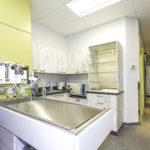 salle chirurgie clinique vétérinaire